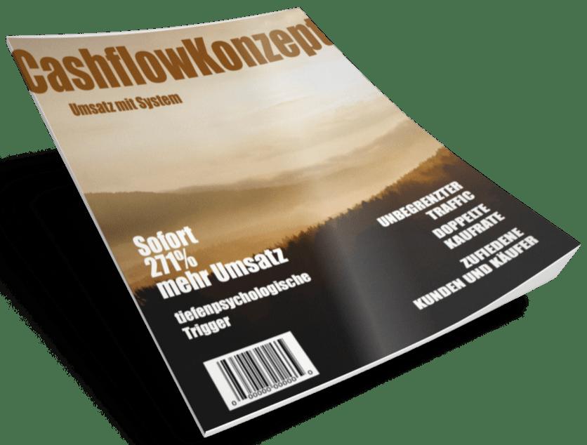 Das Cashflowkonzept von Eric Promm