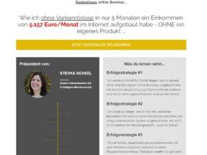 Stevka Scheel Webinar
