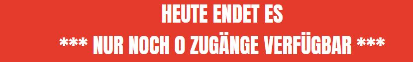 Zero to Launch von Said Shiripour - Ende