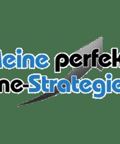 Meine-perfekte-Online-Strategie-2.0 Oliver Schmuck