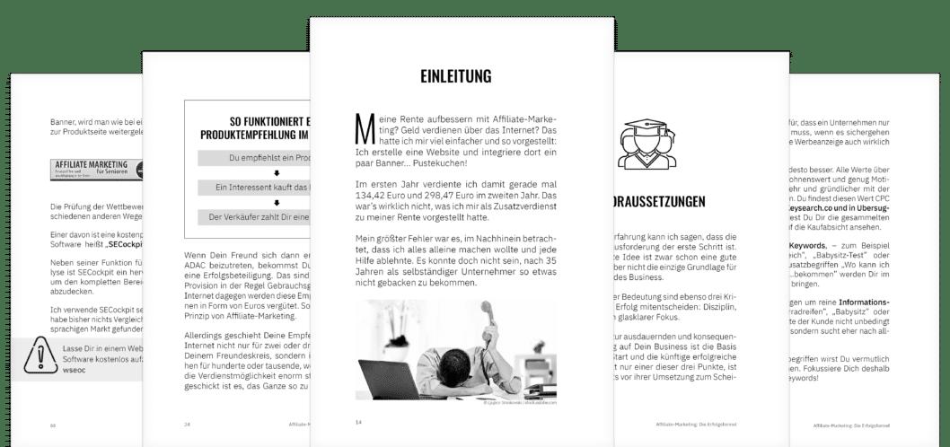 Affiliate-Marketing die Erfolgsformel - Einblick ins Buch